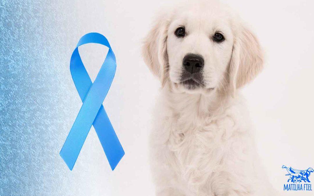 Novembro Azul e seu cachorro – Fique atento