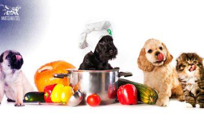 Você sabe o que é AN? Alimentação Natural para cães.