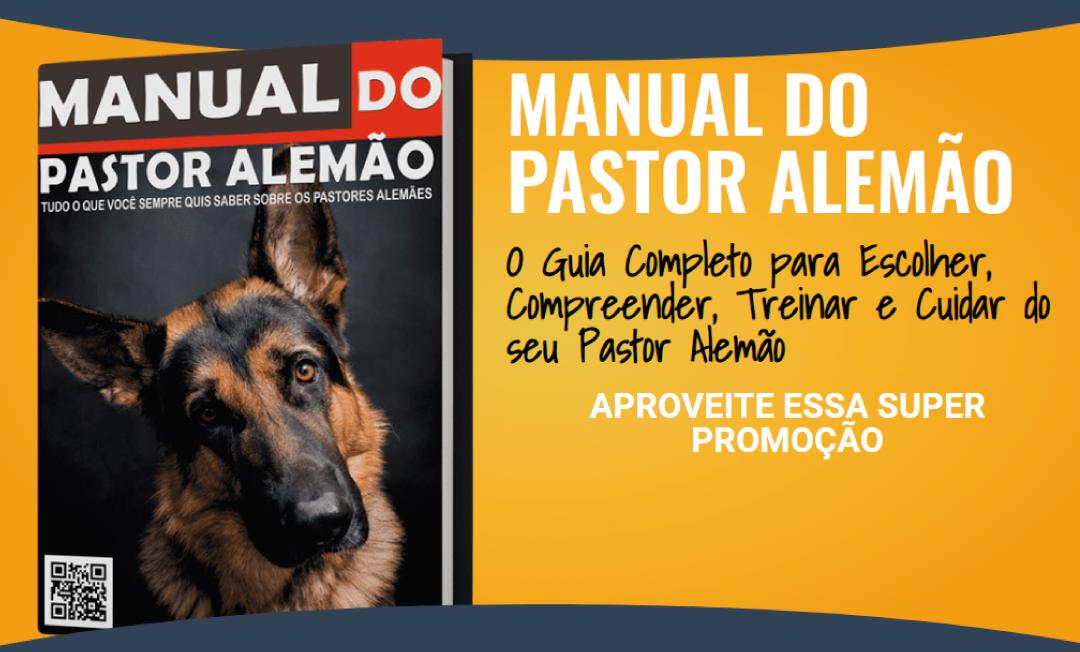 Quer saber tudo sobre seu Pastor Alemão?